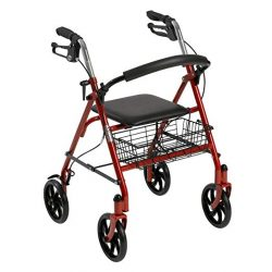 Four Wheel Rolling Walker with Fold Up Removable Back Support